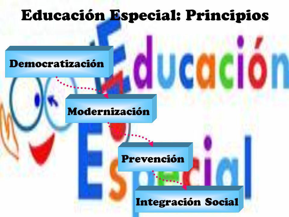 Educación Especial: Principios