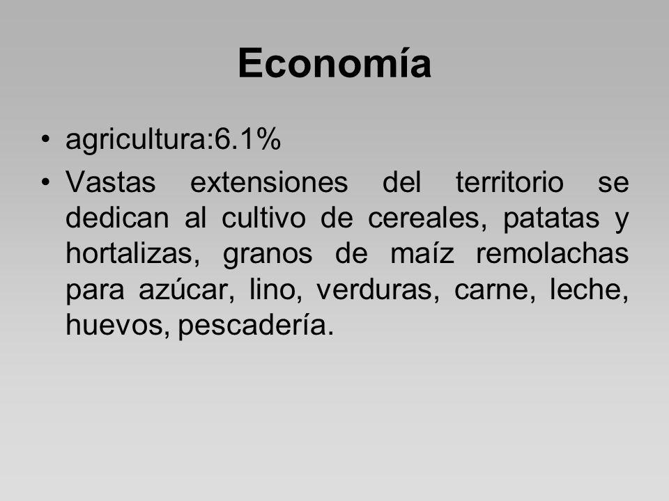 Economía agricultura:6.1%