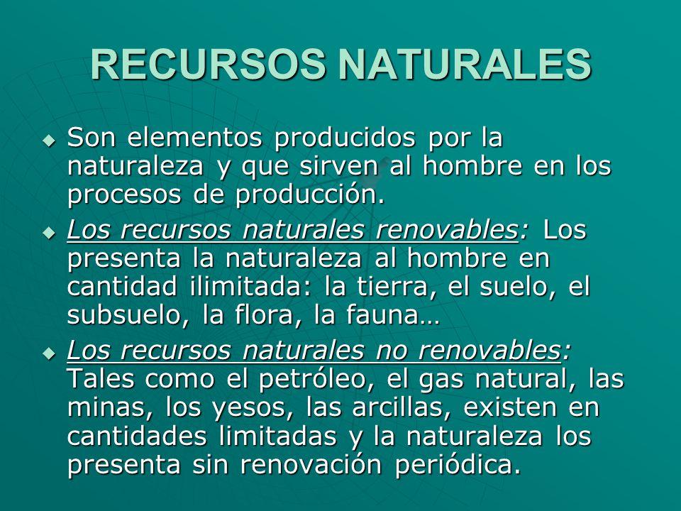 RECURSOS NATURALES Son elementos producidos por la naturaleza y que sirven al hombre en los procesos de producción.