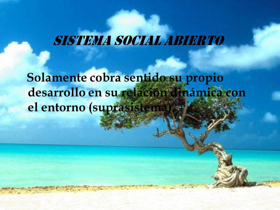 sistema social abierto