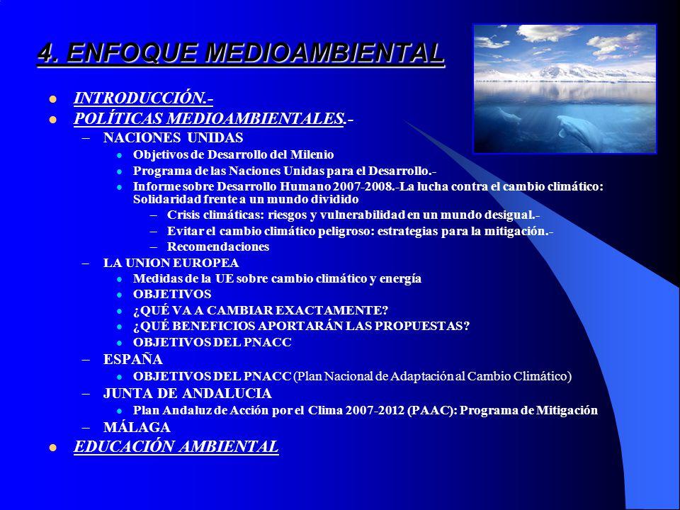 4. ENFOQUE MEDIOAMBIENTAL