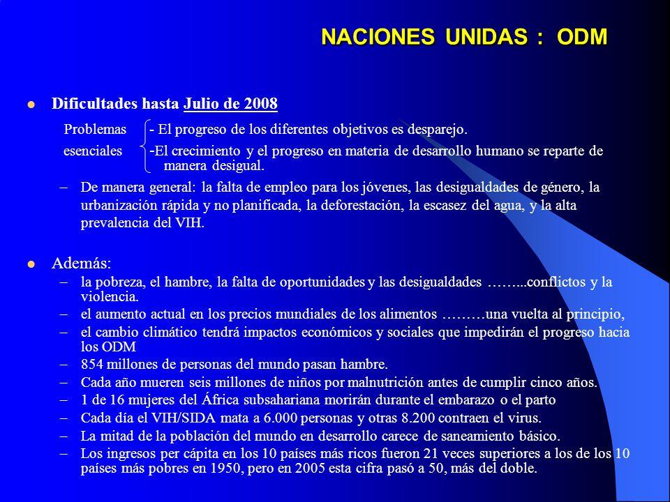 NACIONES UNIDAS : ODM Dificultades hasta Julio de 2008