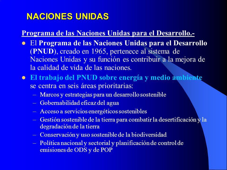 NACIONES UNIDAS Programa de las Naciones Unidas para el Desarrollo.-