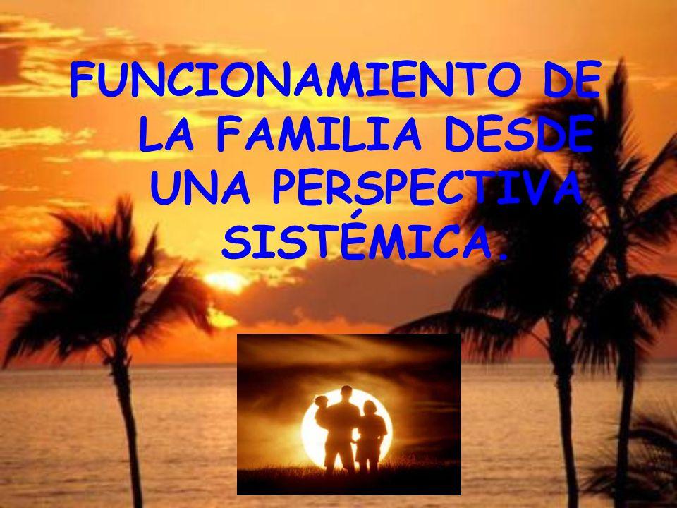 FUNCIONAMIENTO DE LA FAMILIA DESDE UNA PERSPECTIVA SISTÉMICA.