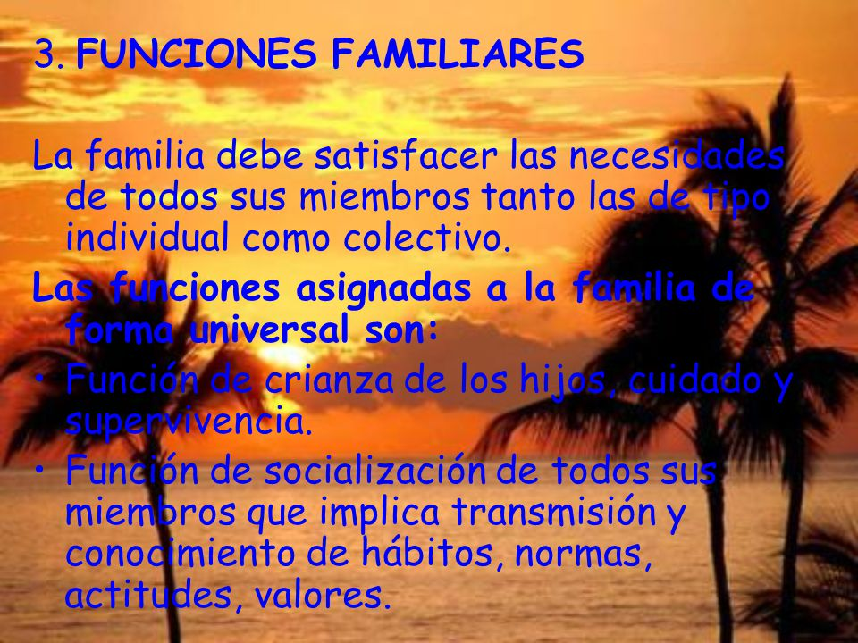 3. FUNCIONES FAMILIARES La familia debe satisfacer las necesidades de todos sus miembros tanto las de tipo individual como colectivo.