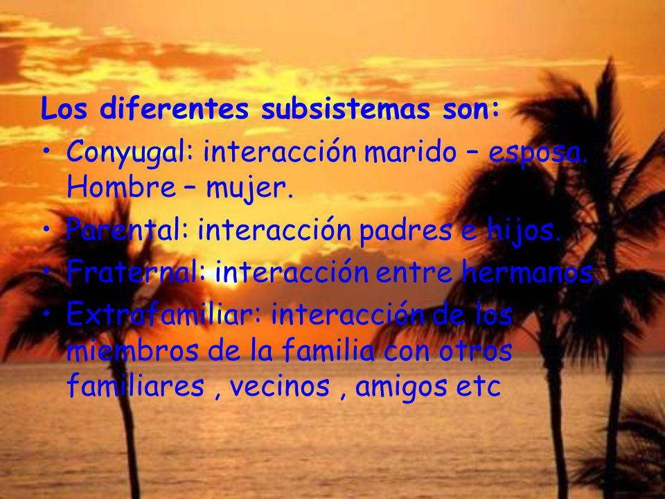 Los diferentes subsistemas son: