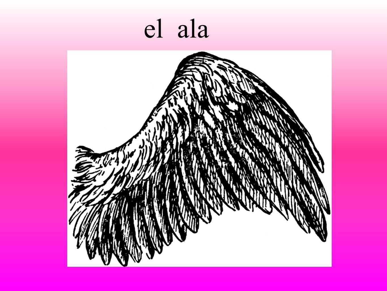 el ala