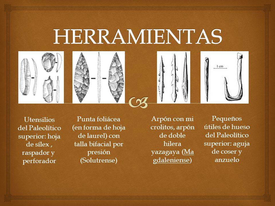 HERRAMIENTAS Utensilios del Paleolítico superior: hoja de sílex , raspador y perforador.