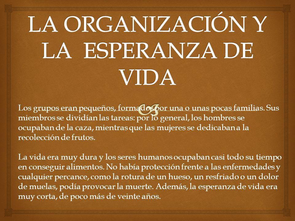 LA ORGANIZACIÓN Y LA ESPERANZA DE VIDA