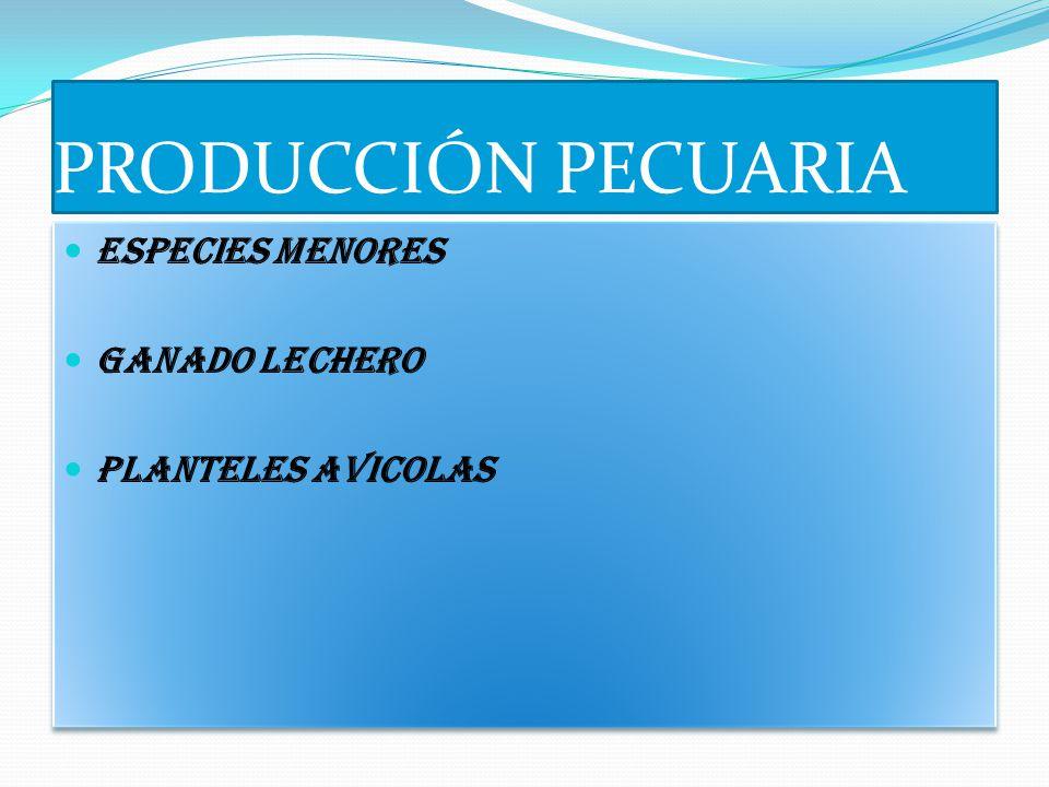 PRODUCCIÓN PECUARIA ESPECIES MENORES GANADO LECHERO PLANTELES AVICOLAS