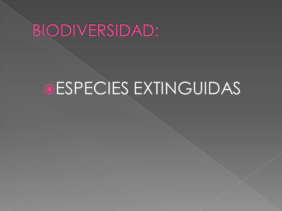 BIODIVERSIDAD: ESPECIES EXTINGUIDAS
