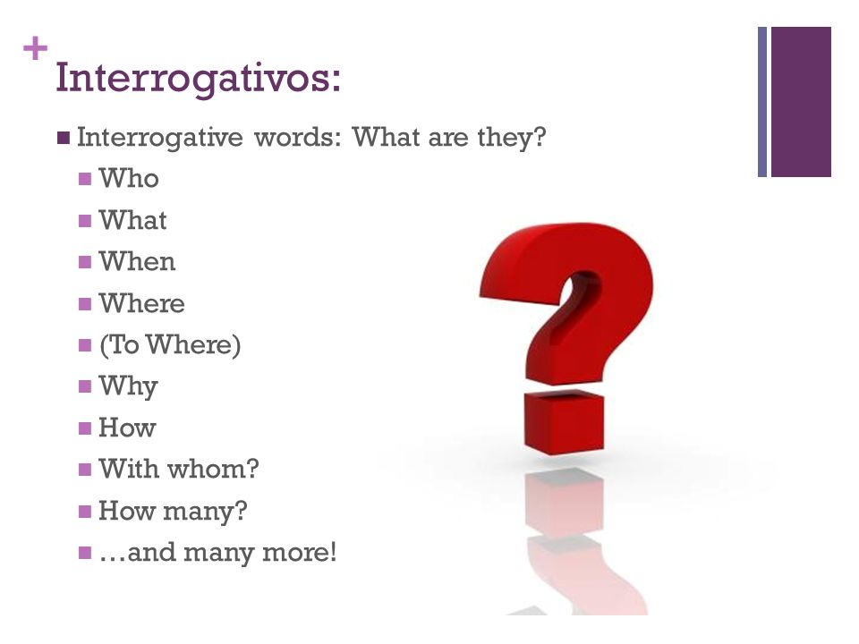 Interrogativos: Interrogative words: What are they Who What When