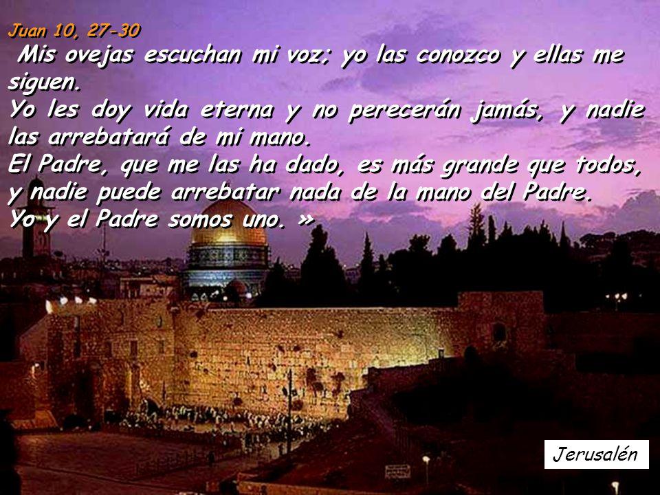 Juan 10, 27-30 Mis ovejas escuchan mi voz; yo las conozco y ellas me siguen.
