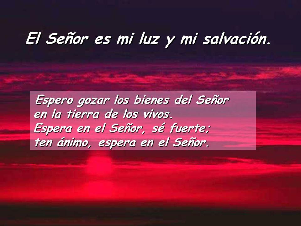 El Señor es mi luz y mi salvación.