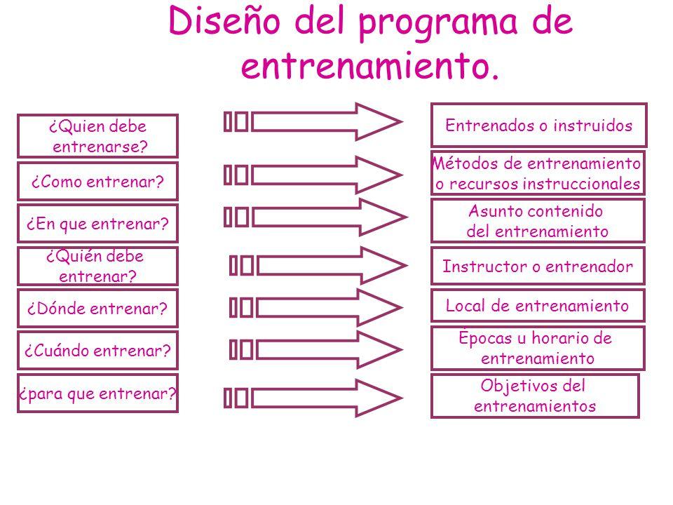 Diseño del programa de entrenamiento.