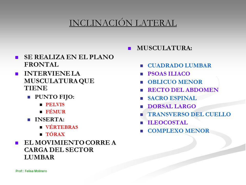 INCLINACIÓN LATERAL MUSCULATURA: SE REALIZA EN EL PLANO FRONTAL