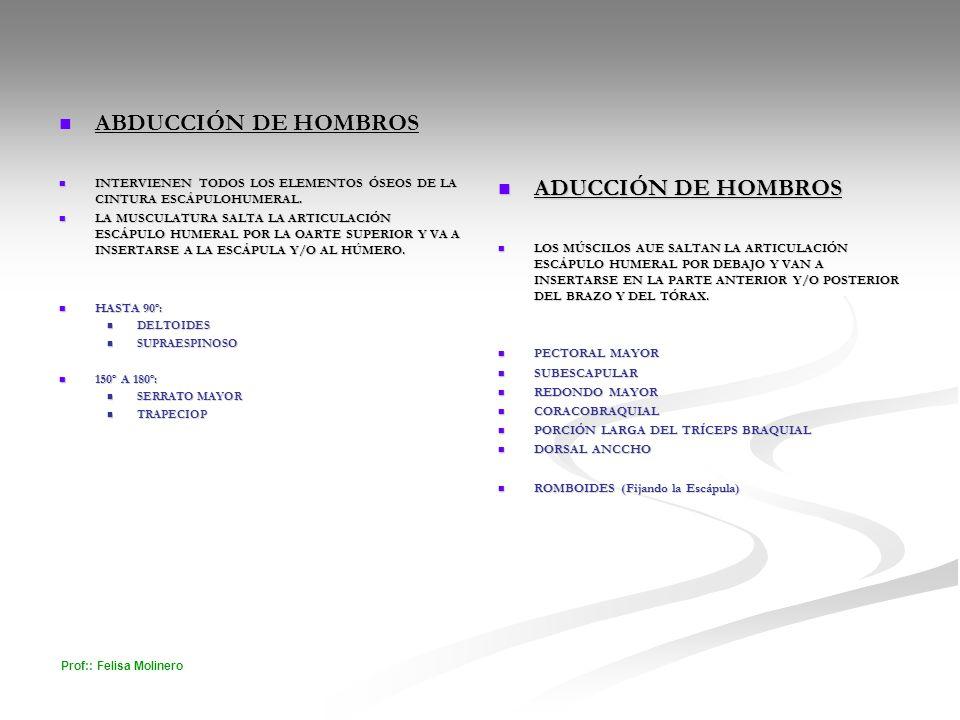 ABDUCCIÓN DE HOMBROS ADUCCIÓN DE HOMBROS