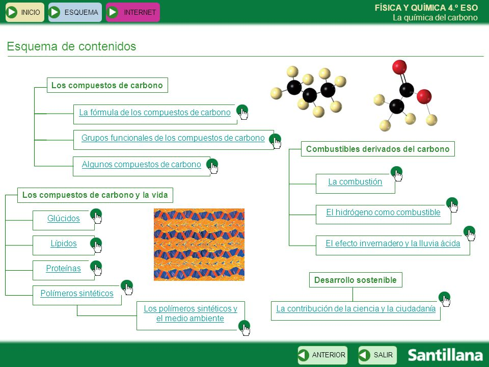 Esquema de contenidos Los compuestos de carbono