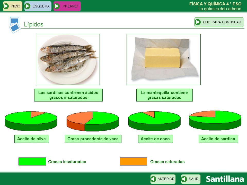 Lípidos Las sardinas contienen ácidos grasos insaturados