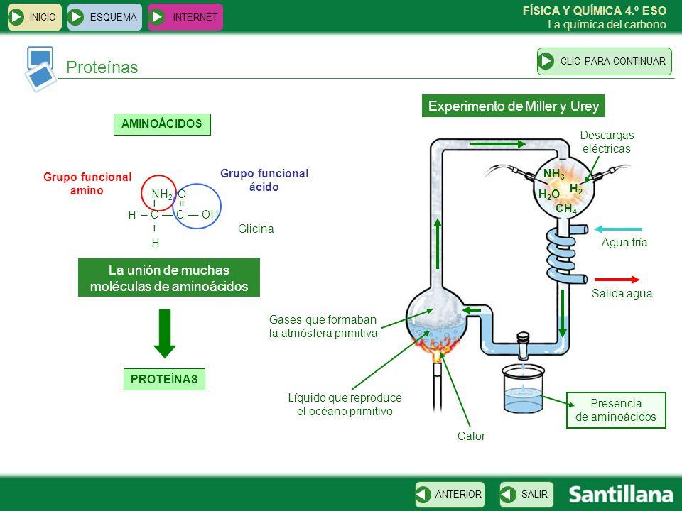 Proteínas Experimento de Miller y Urey