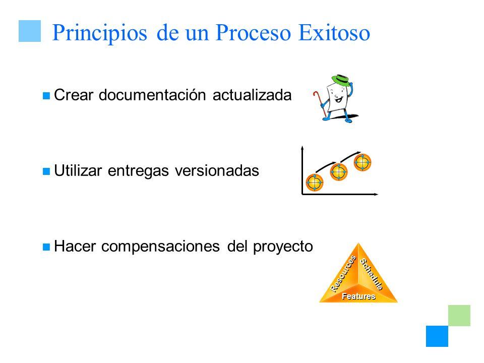 Principios de un Proceso Exitoso