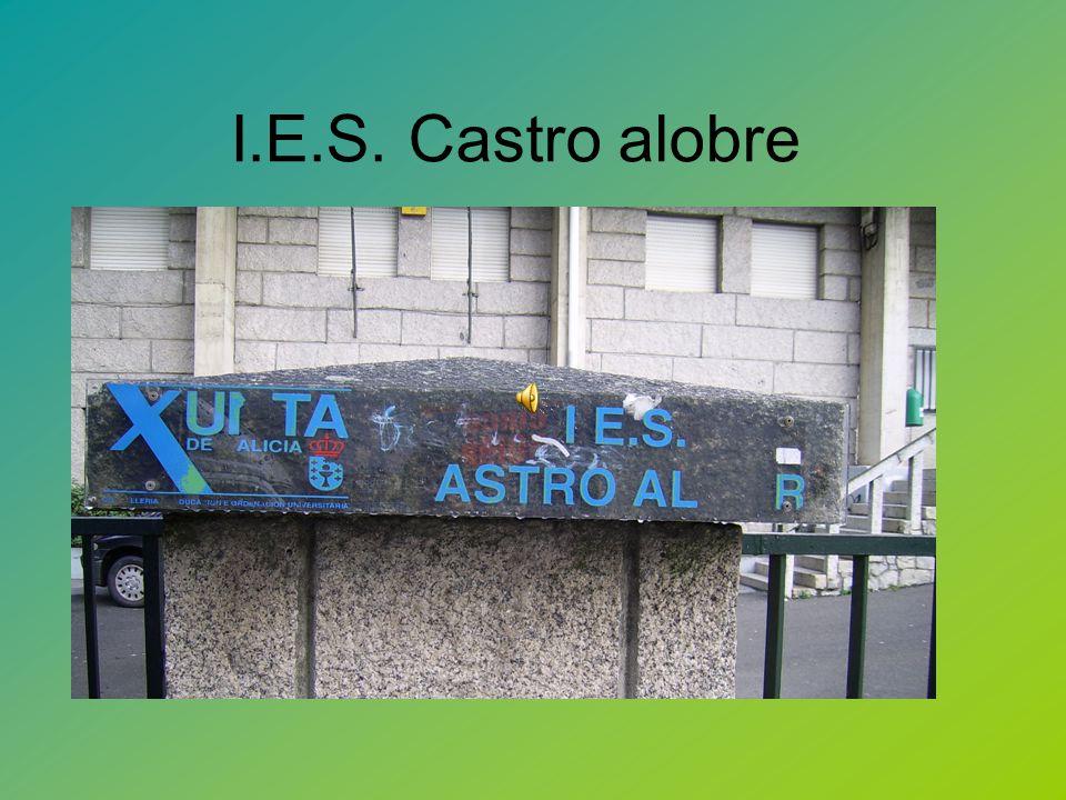 I.E.S. Castro alobre