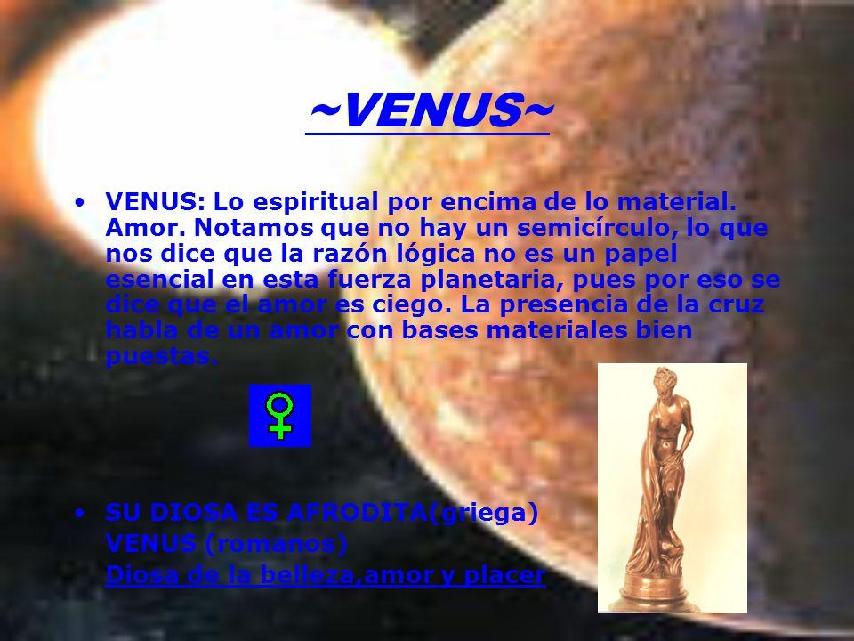 ~VENUS~