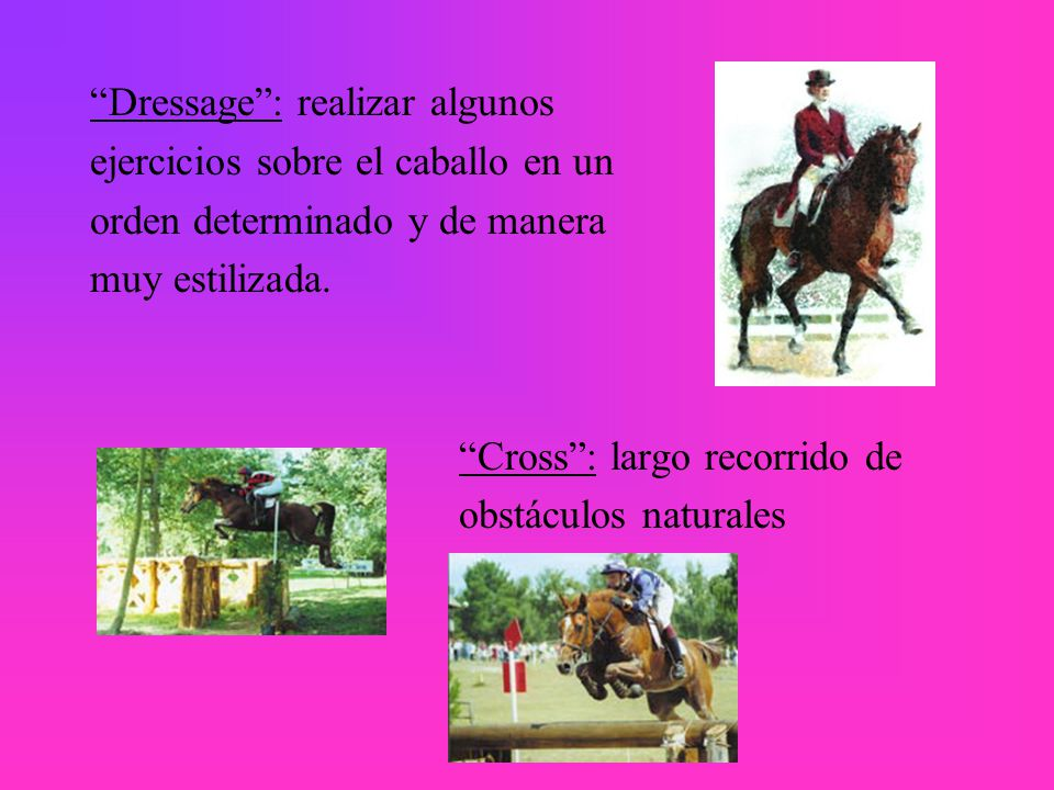 Dressage : realizar algunos ejercicios sobre el caballo en un orden determinado y de manera muy estilizada.