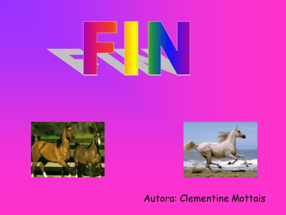 FIN Autora: Clementine Mottais