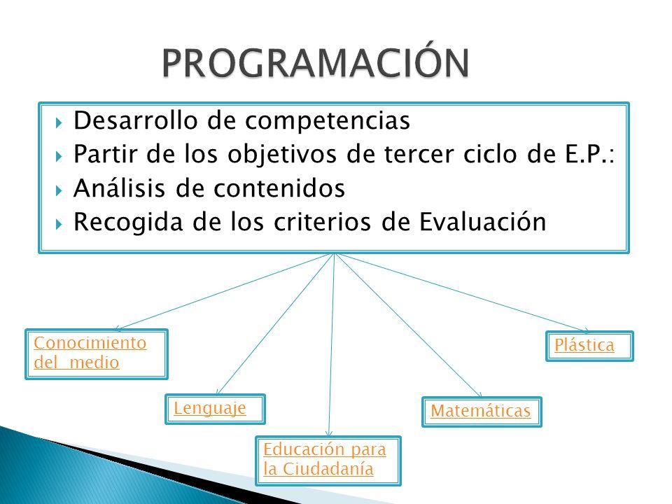 PROGRAMACIÓN Desarrollo de competencias