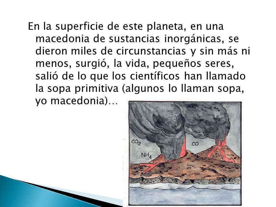 En la superficie de este planeta, en una macedonia de sustancias inorgánicas, se dieron miles de circunstancias y sin más ni menos, surgió, la vida, pequeños seres, salió de lo que los científicos han llamado la sopa primitiva (algunos lo llaman sopa, yo macedonia)…