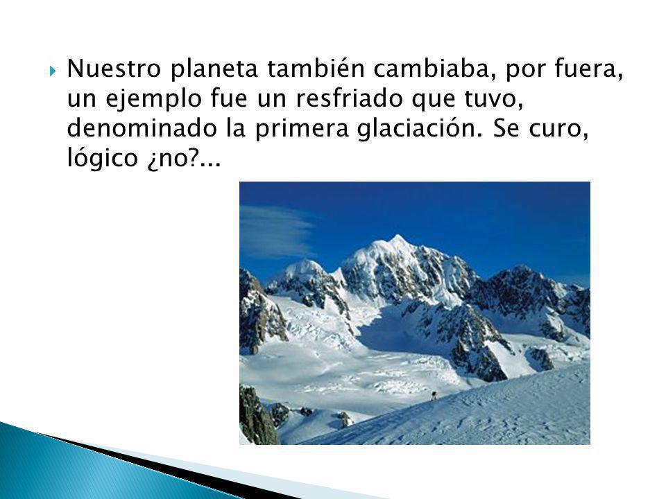 Nuestro planeta también cambiaba, por fuera, un ejemplo fue un resfriado que tuvo, denominado la primera glaciación.