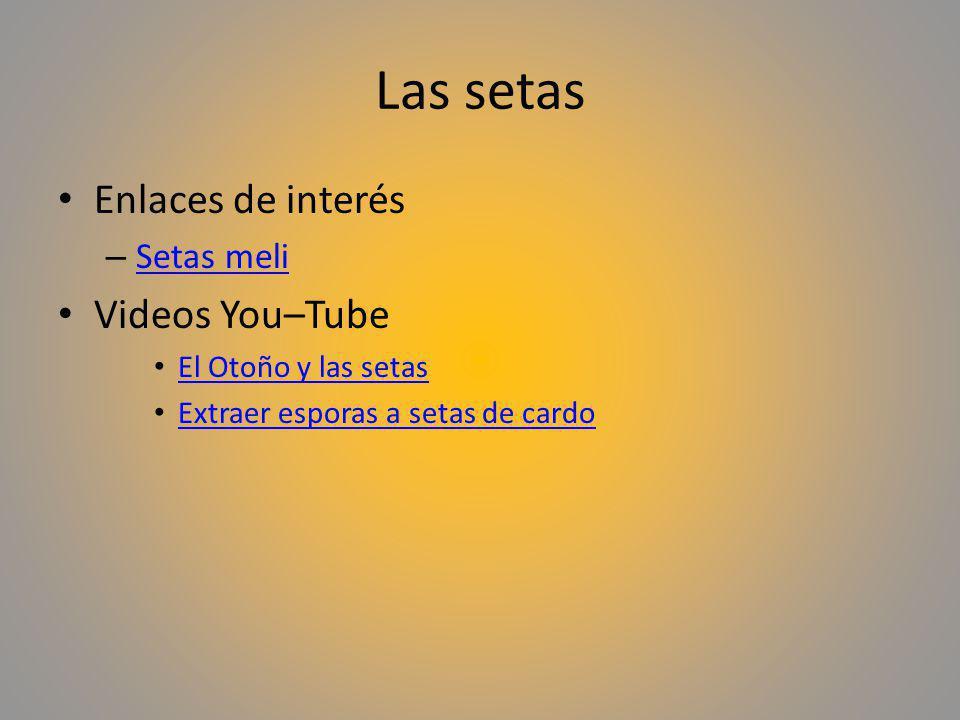 Las setas Enlaces de interés Videos You–Tube Setas meli
