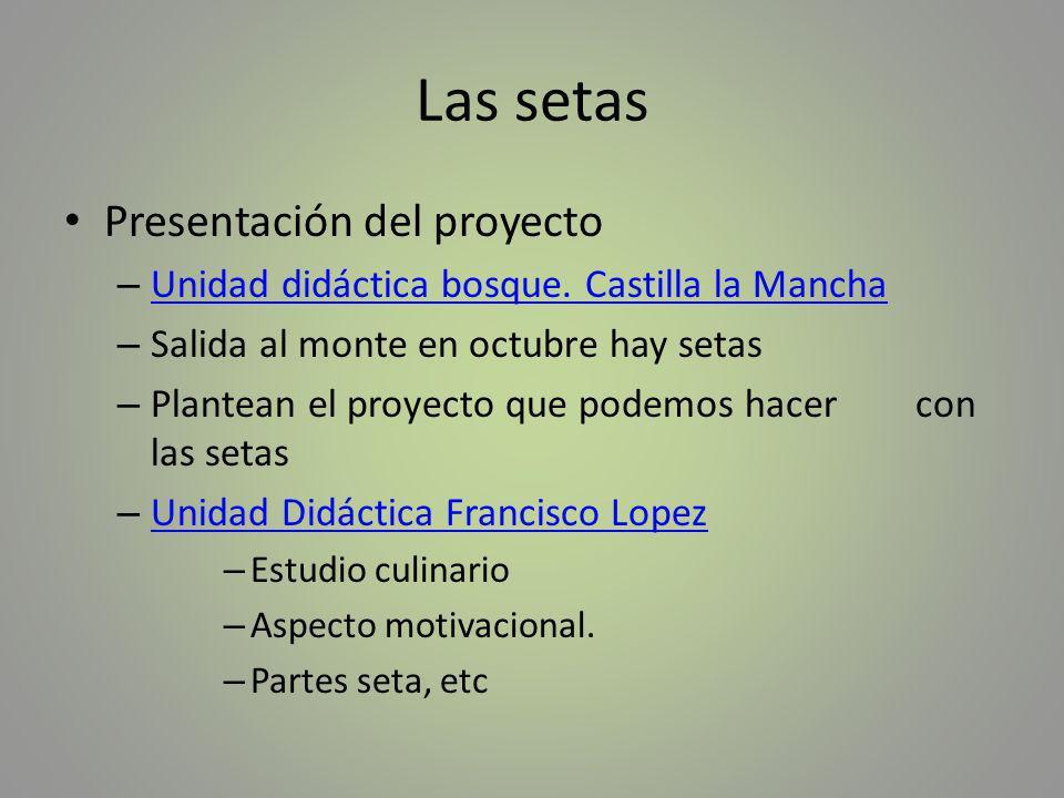 Las setas Presentación del proyecto
