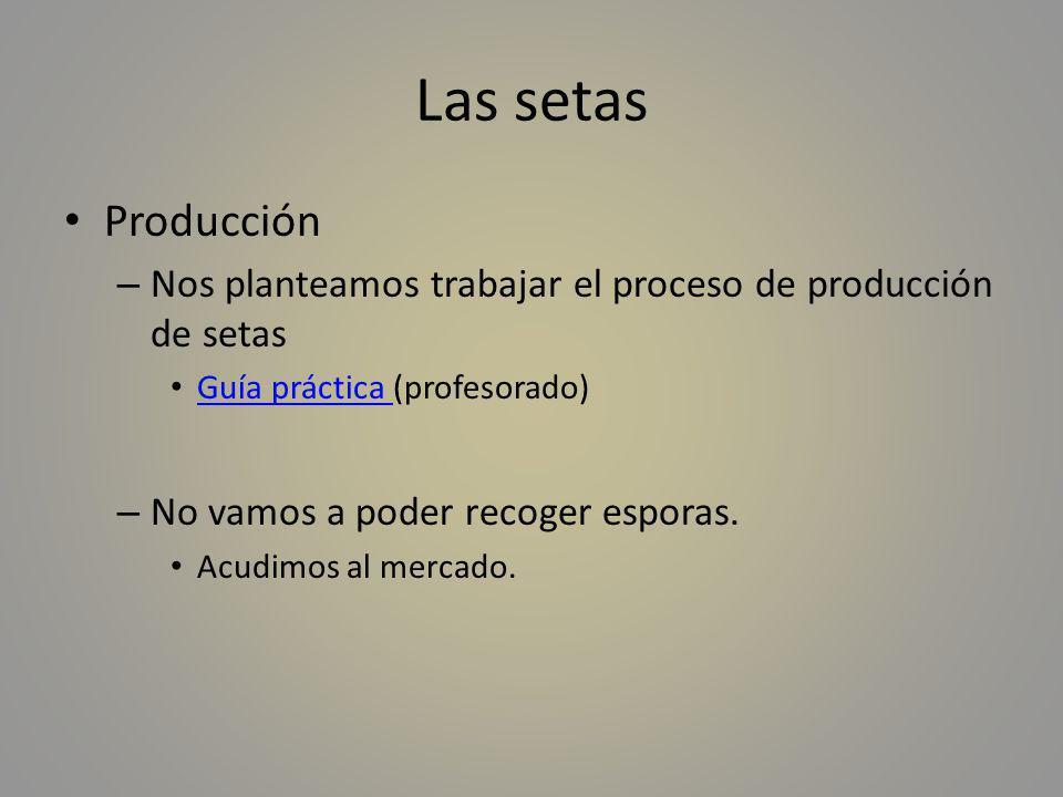 Las setas Producción. Nos planteamos trabajar el proceso de producción de setas. Guía práctica (profesorado)