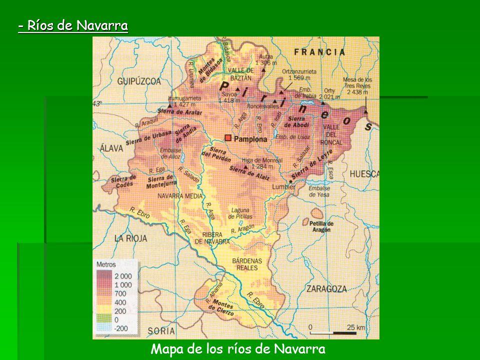 Mapa de los ríos de Navarra