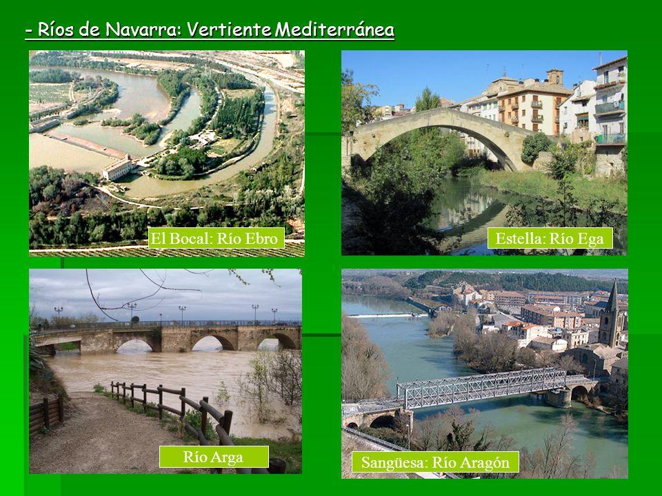 - Ríos de Navarra: Vertiente Mediterránea