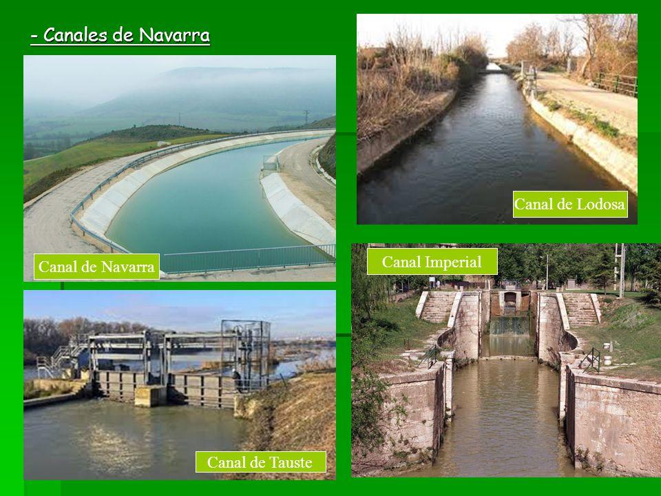 - Canales de Navarra Canal de Lodosa Canal Imperial Canal de Navarra