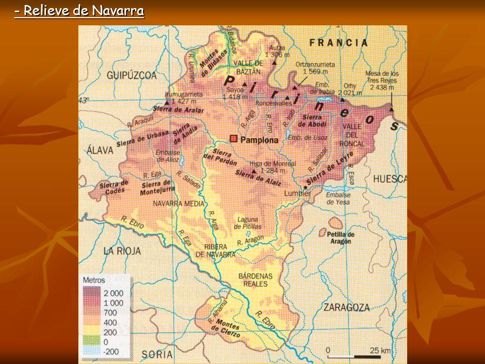 - Relieve de Navarra