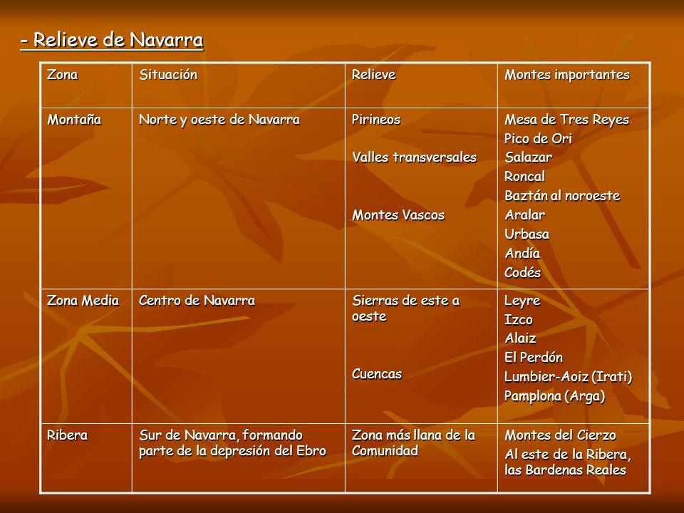- Relieve de Navarra Zona Situación Relieve Montes importantes Montaña