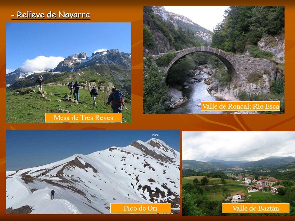 Valle de Roncal: Río Esca