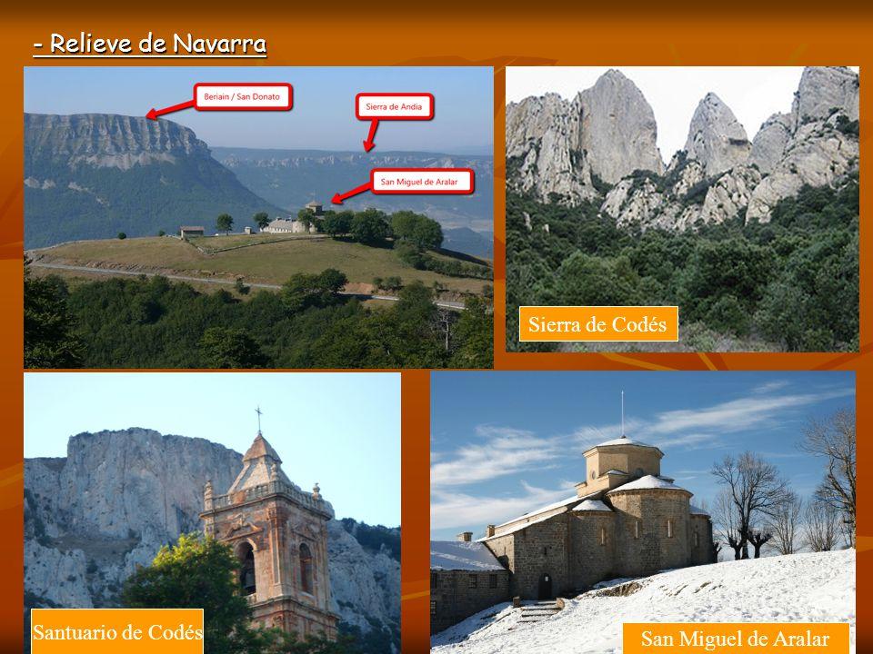 - Relieve de Navarra Sierra de Codés Santuario de Codés