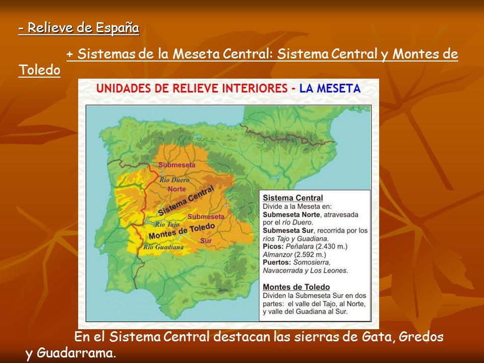 - Relieve de España + Sistemas de la Meseta Central: Sistema Central y Montes de Toledo.