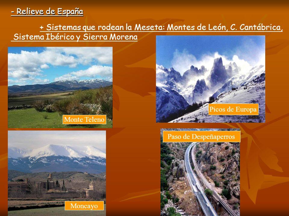Sistema Ibérico y Sierra Morena
