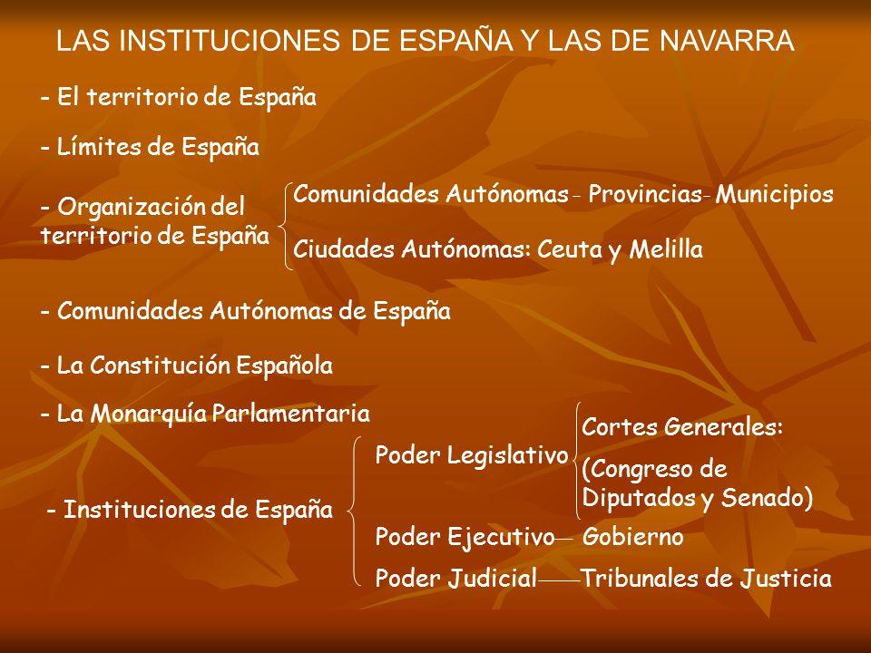 LAS INSTITUCIONES DE ESPAÑA Y LAS DE NAVARRA