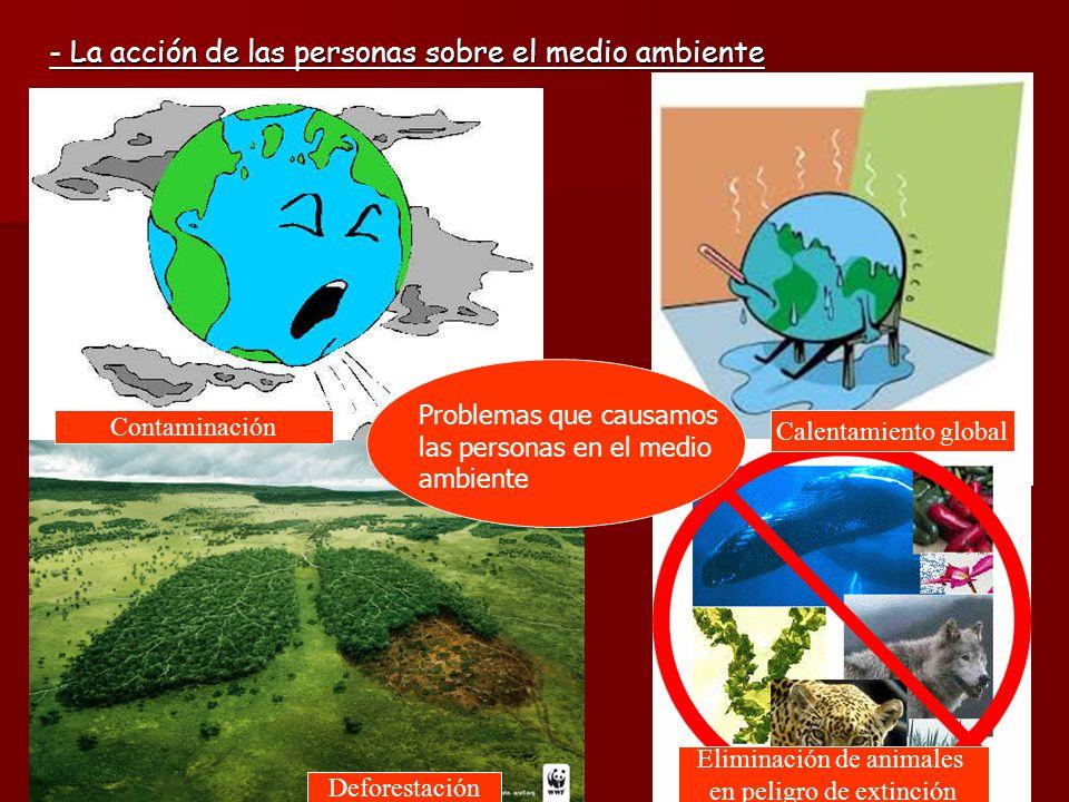 - La acción de las personas sobre el medio ambiente