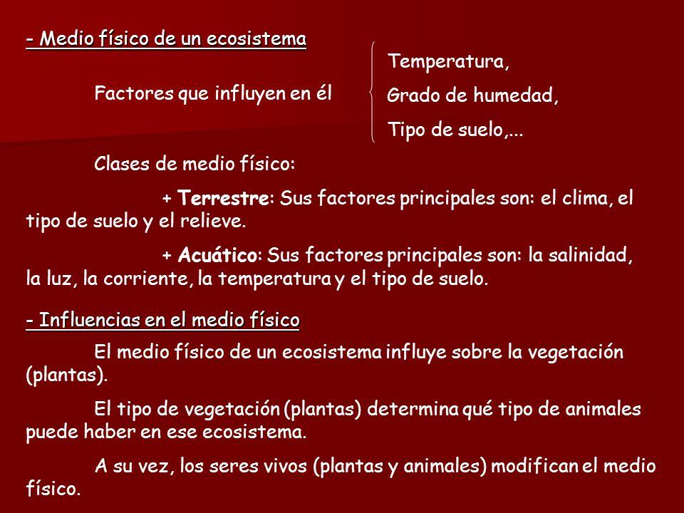 - Medio físico de un ecosistema Temperatura, Grado de humedad,
