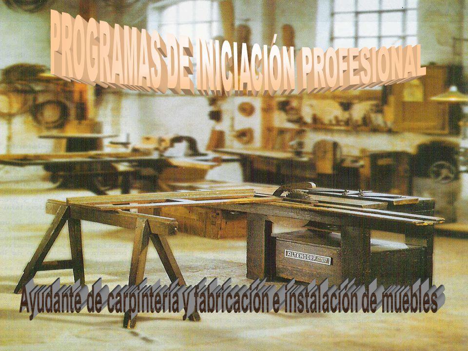PROGRAMAS DE INICIACIÓN PROFESIONAL