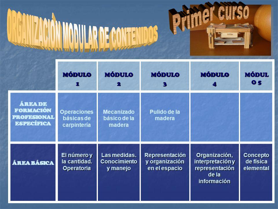 Primer curso ORGANIZACIÓN MODULAR DE CONTENIDOS MÓDULO 1 2 3 4
