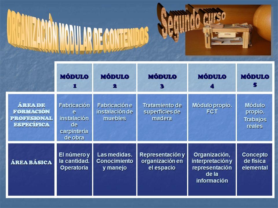 Segundo curso ORGANIZACIÓN MODULAR DE CONTENIDOS MÓDULO 1 2 3 4
